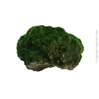 Ornament Floating Lava Stone W/moss (S) 7x6x6cm