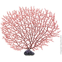 Copi Coral Fern Red/Coral Rock 31x26cm