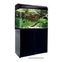980T AquaStyle 240L Tall Curved Glass Aquarium