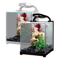 Reflex 13 Glass Aquarium 13L