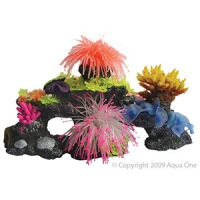 Copi Coral Combined Coral B Medium 40x20x20
