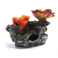 Ornament Chalice and Sun Corals on Live Rock Med 27x16.5x19cm