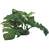 Planter Plant Large Green Leaf on Rock (M) 23x19x13cm
