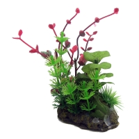 Ornament Betta Green/Red Plant On Rock 10cm