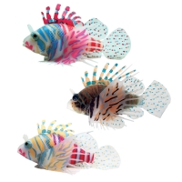 Copi Sea Dwarf Lionfish Floating Mixed Colour