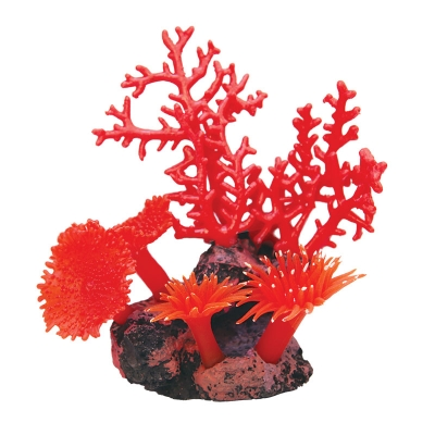 Copi Coral Red Gorgonian and Anemones