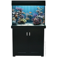 AquaReef 300 Marine Set 300L - 102L x 52D x 73 + 88cm H Black