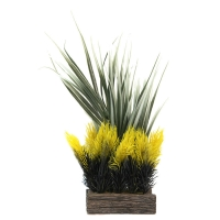 Planter Box Grasses/Yellow Ferns 11.3x9x22.5cm