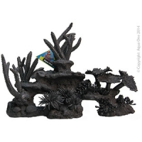 Ornament Black Coral Mixed (XL) 39x14x18.5cm