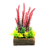 Planter Box Red Egeria 10.7x6.2x20cm