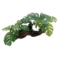Ornament Driftwood With Plastic Plant Md 37x24x18cm