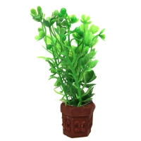 Ornament Betta Pot Plant Mixed Green Plants 10cm