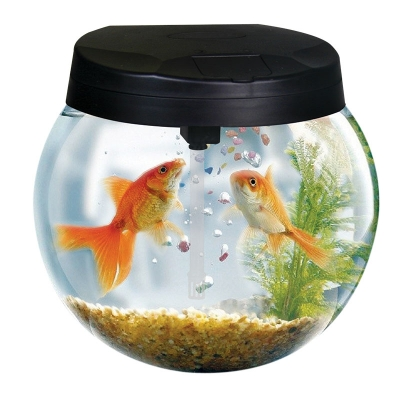 AquaSphere Glass Bowl Aquarium
