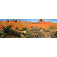 Background 48cm x 15m Desert Yellow Land (Aqua/Reptile)