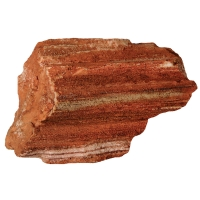 Ornament Petrified Wood Medium 17.3x11x9.3cm