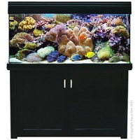 AquaReef 400 Marine Set 400L 132L x 52D x 73 + 88cm H Black