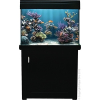 AquaReef 195 Marine Set 195L 70L x 52D x 78 + 78cm H Black