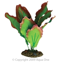 Silk Plant-Amazon Red/Green (S)