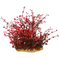 Plastic Plant On Rock Bacopa Red 13.5 X 9.5 X 19cm