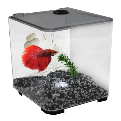 Betta Tank - Style Acrylic 3L With Light (Charcoal)