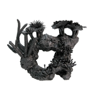 Ornament Black Coral Mixed (M) 31x12x23cm