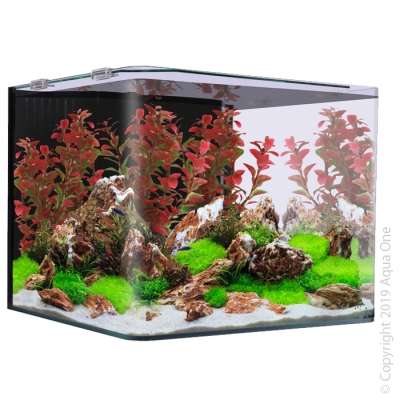 Aqua One Scaper Aquarium