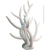 Ornament White Coral Staghorn (L) 27x13.5x32cm