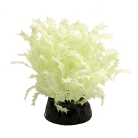 Plastic Plant Glow In The Dark Subwassertang Plant 5cm