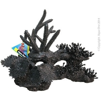 Ornament Black Coral Mixed (S) 27x16x23cm