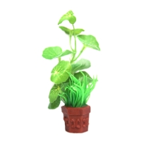 Planter Potted Plant Banna Lilly 9x7x12cm