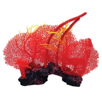 Ornament Copi Coral Red Sea Fans 36x28x30cm