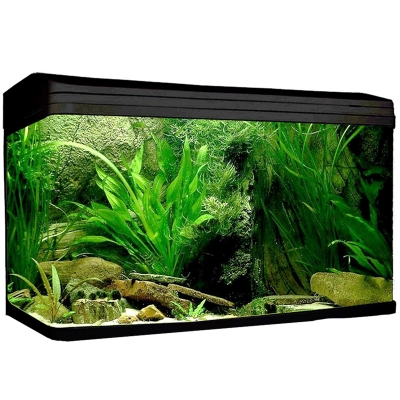 AquaStyle 980 - 215L Curved Glass Aquarium