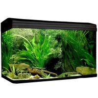 980 AquaStyle 215L Curved Glass Aquarium