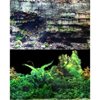 Background 30.5x60cm Black Plant Layer Rock  5