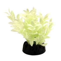 Plastic Plant Glow In The Dark Hygro 5cm